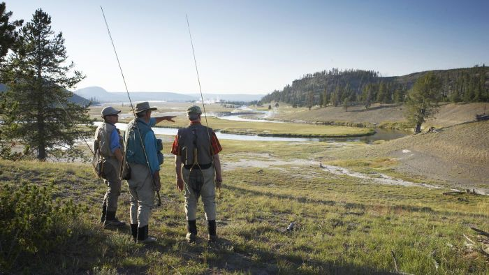 What Are Some Resources for Planning Yellowstone National Park Tours?