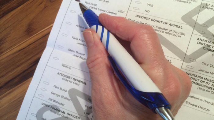 What Is the Reason for Issuing a Sample Ballot?