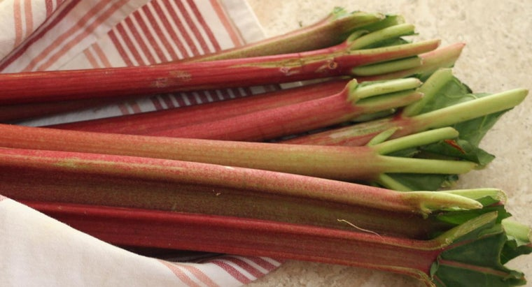 What Are Some Simple Rhubarb Recipes?