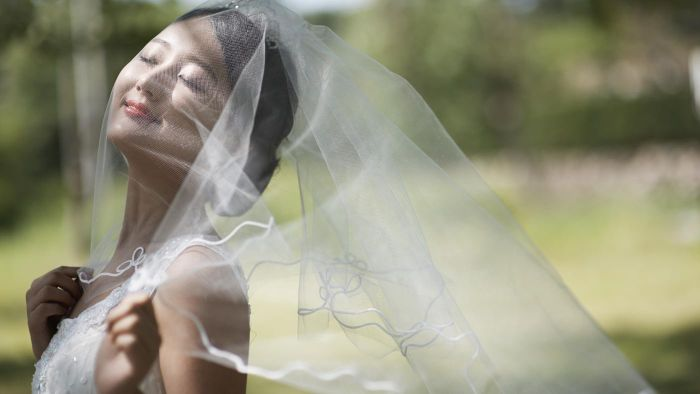What Are the Different Types of Bridal Veil Fabrics?