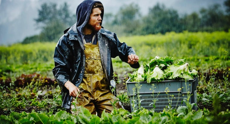 What Are Some Sources for Financing a Business in Agriculture?