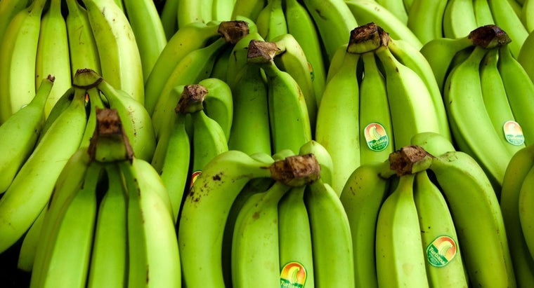What Foods Provide a Good Source of Potassium?
