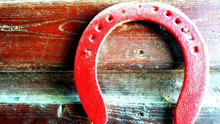 What Are the Official Rules of Horseshoes?