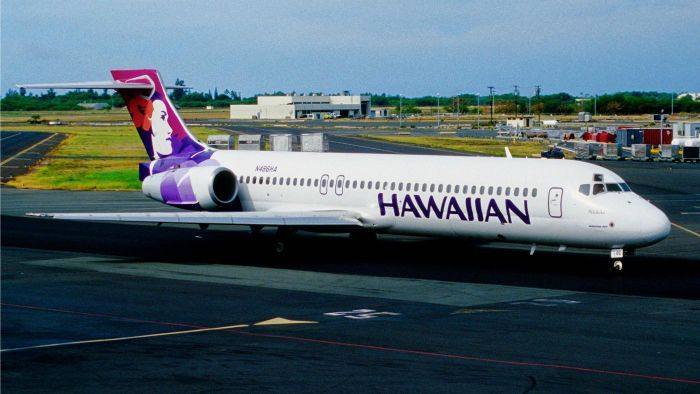 Can You Check in for a Flight on Hawaiian Airlines Online?