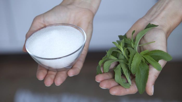 Is the Natural Sweetener Stevia Safe?