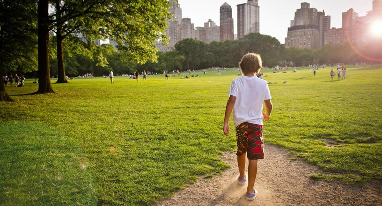What Are Some Attractions in NYC for Kids?