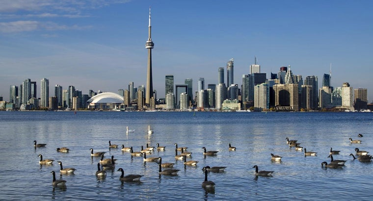 How Can You Find the 411 Directory for Ontario?