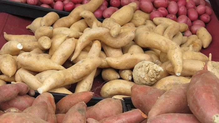 What Is the Difference Between Yams and Sweet Potatoes?