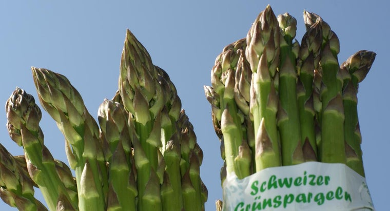 What Types of Methods Are Used to Prepare Asparagus Recipes?
