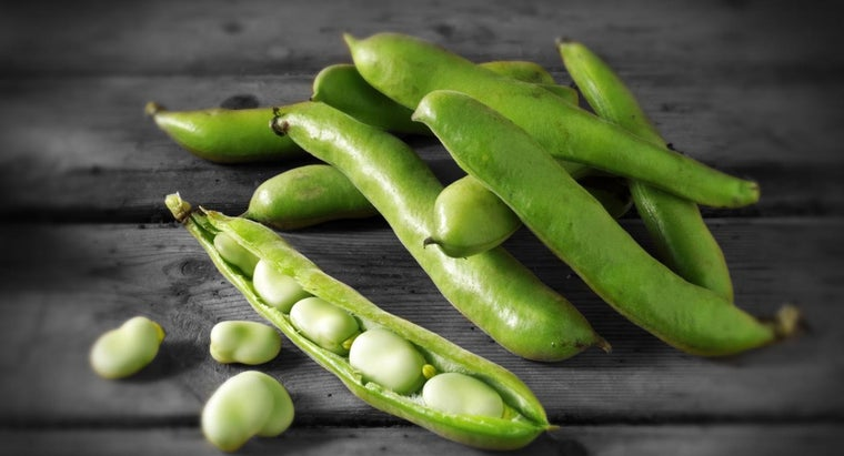 How Do You Cook Dried Fava Beans?