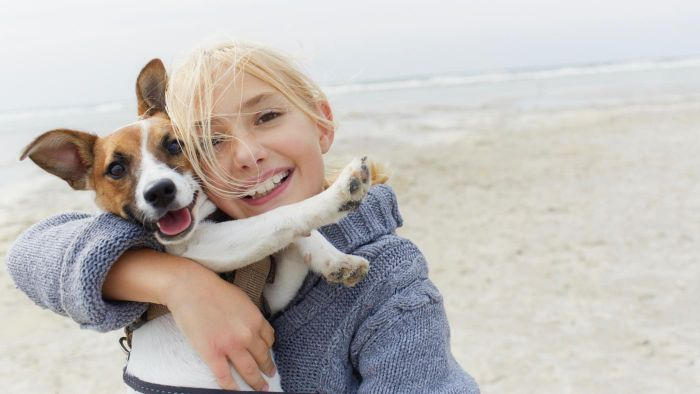 What Kind of Insurance Can You Get for a Pet Dog?