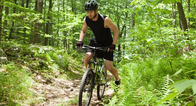 How Do You Get a Bike Insurance Quote?