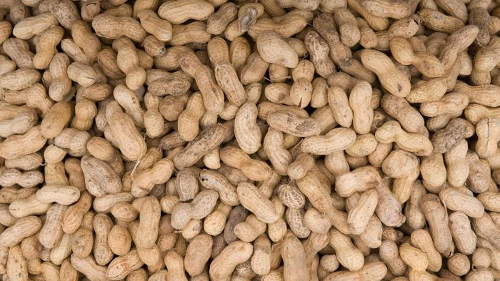 How do you cook raw peanuts?