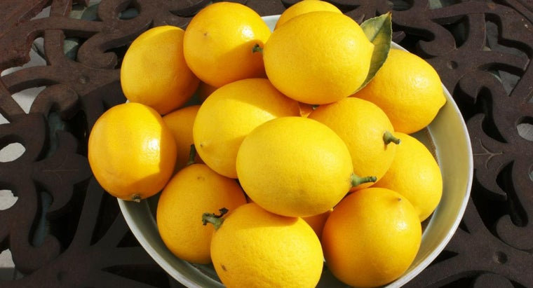 When Should You Pick Meyer Lemons?