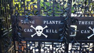 Where is the Poison Garden?