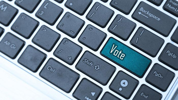 What Are the Benefits of an Online Voting System?