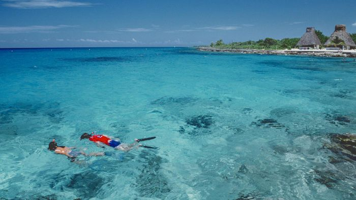Where can you find information on Cozumel shore excursions?