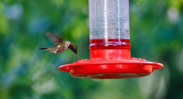 What Is a Good Method of Making Hummingbird Nectar?