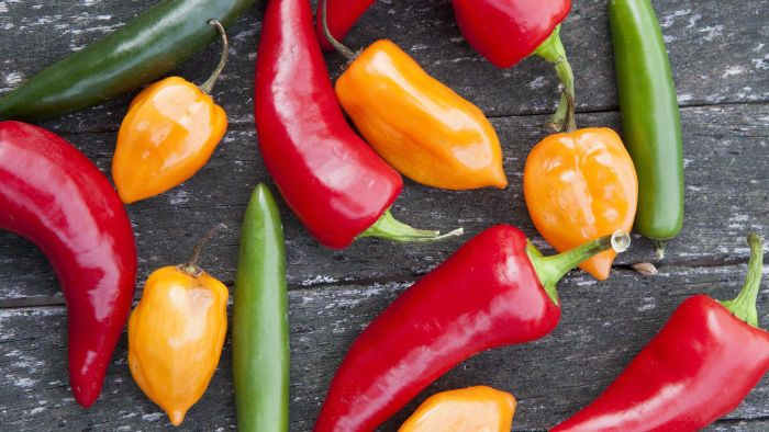 What Are the Names of Some Hot Peppers?
