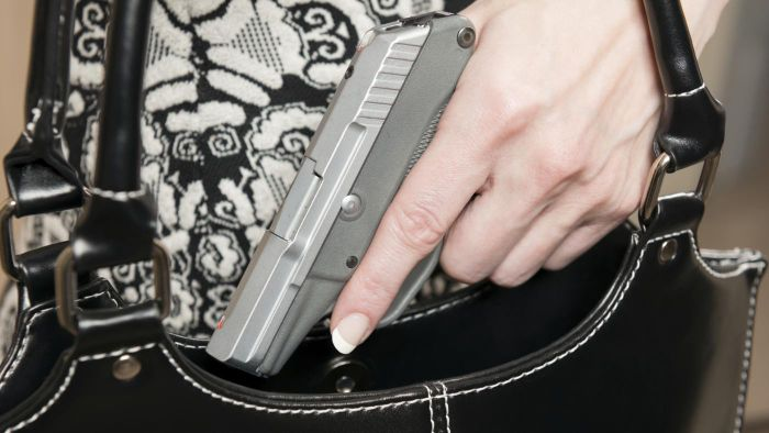 Which States Have Concealed Carry Laws?