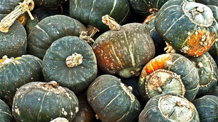 How Do You Cook a Buttercup Squash?
