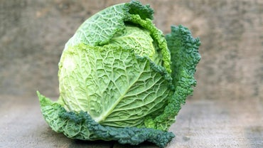 What Are Some Recipes That Have Cabbage in the Ingredients?