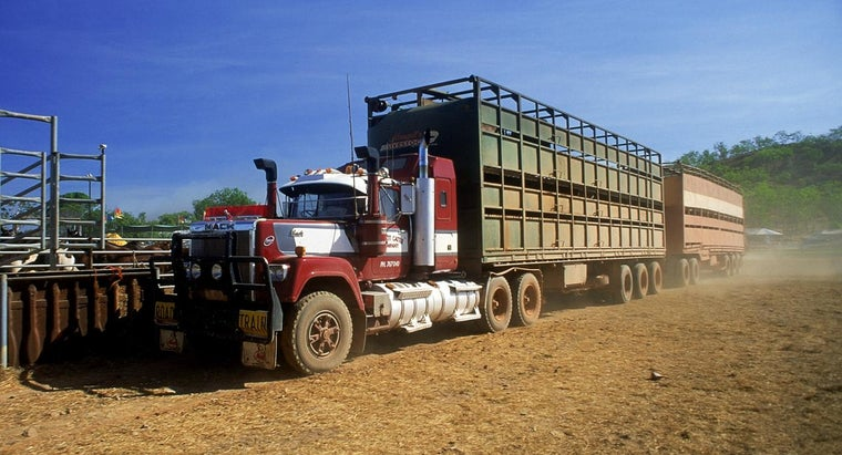 What Requirements Are Needed to Become a Livestock Driver?