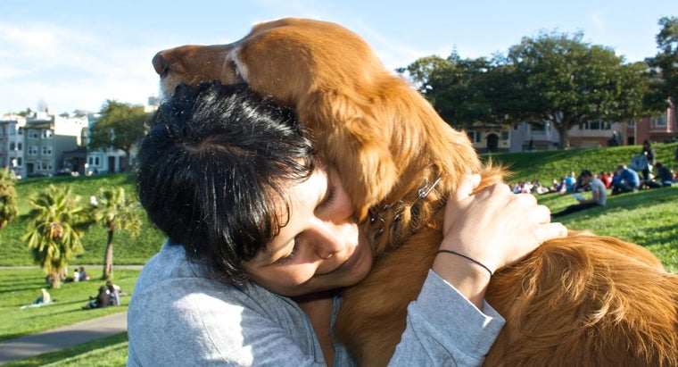 What Are Some Quotes About Loving Animals?