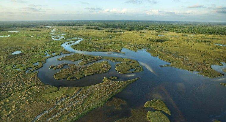 What Are Some of the National Parks in Florida?