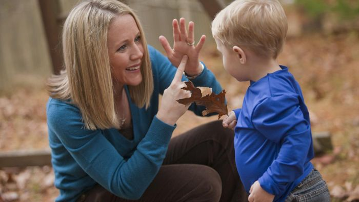 Where Can American Sign Language Beginners Find the Alphabet Song in Sign?
