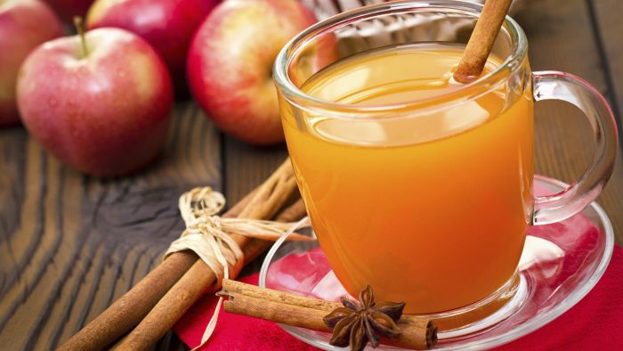 Where can you find recipes online for hot apple cider?