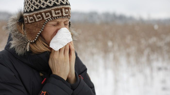 What Are the Symptoms of the Common Cold?