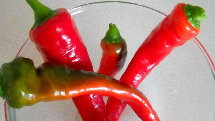 How Do You Cook a Hot Chili Pepper?