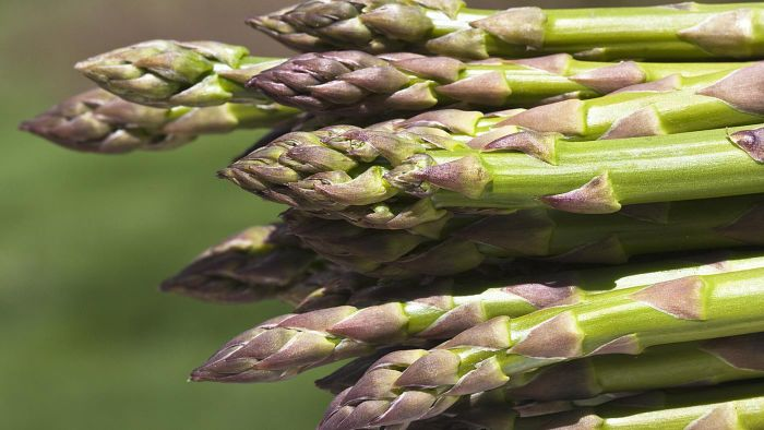 What Are Some Health Benefits of Asparagus?