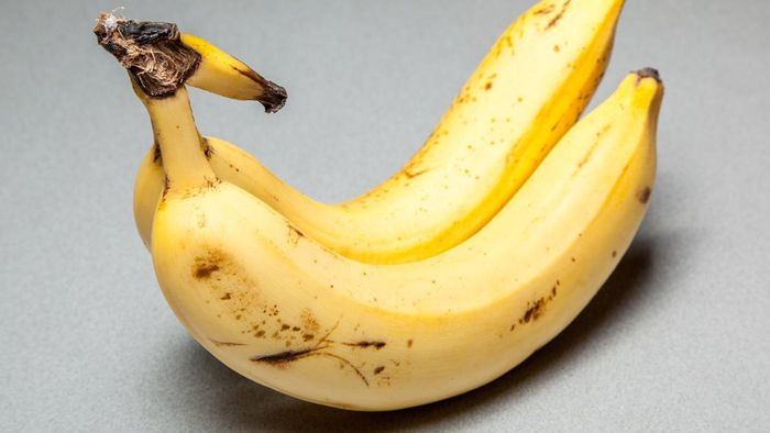 Why Is There Sugar in Bananas?