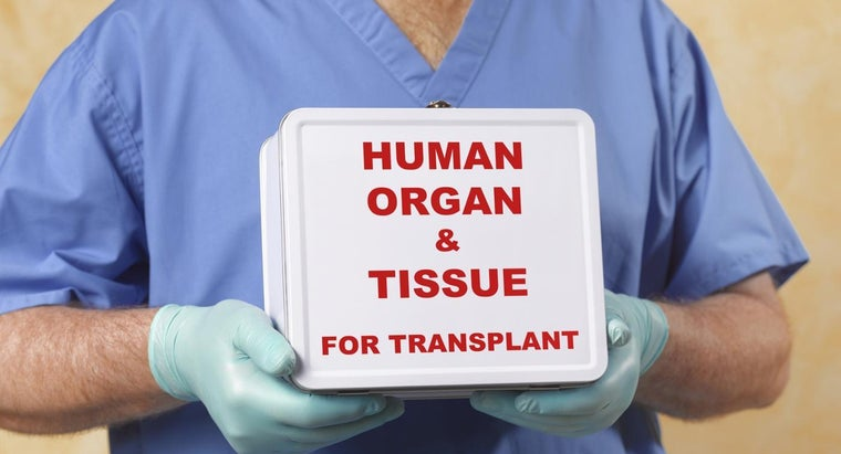 What Are the Best Hospitals for Liver Transplants?