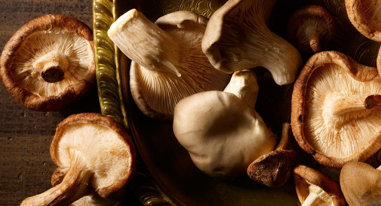 What Are the Health Benefits of Shiitake Mushrooms?
