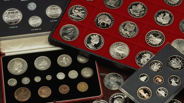 Which Experts Determine the Worth of a Coin Collection?