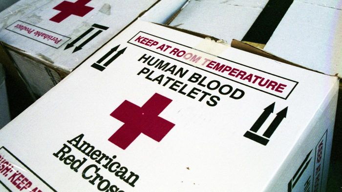 What Is a Normal Range for Blood Platelet Levels?