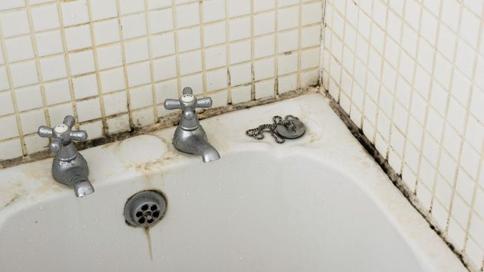 What Causes Mold in a House?