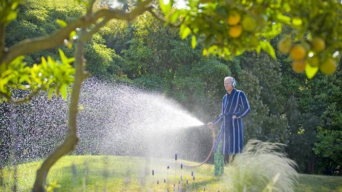 When Is a Good Time to Water Your Lawn?