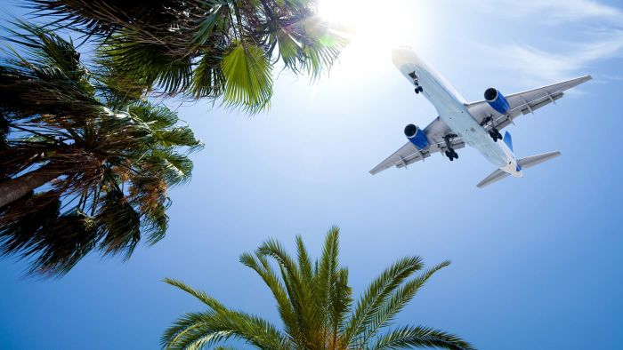 What Are the Check-in Options for Hawaiian Airlines?
