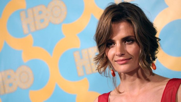 Who Is Stana Katic Married To?