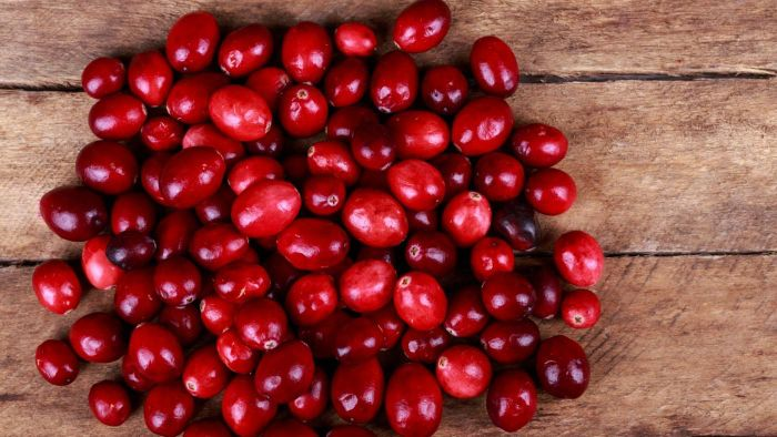 What Are Some Recipe Ideas for Using Fresh Cranberries?