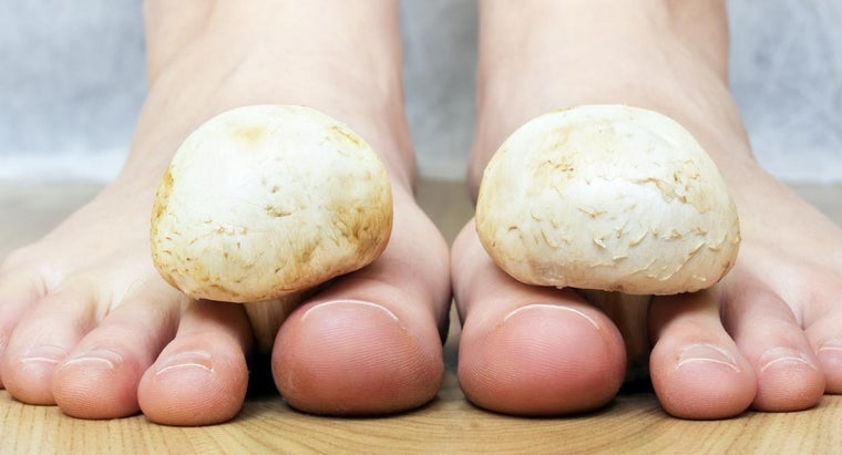 Where Are the Dangers of Skin Fungus?