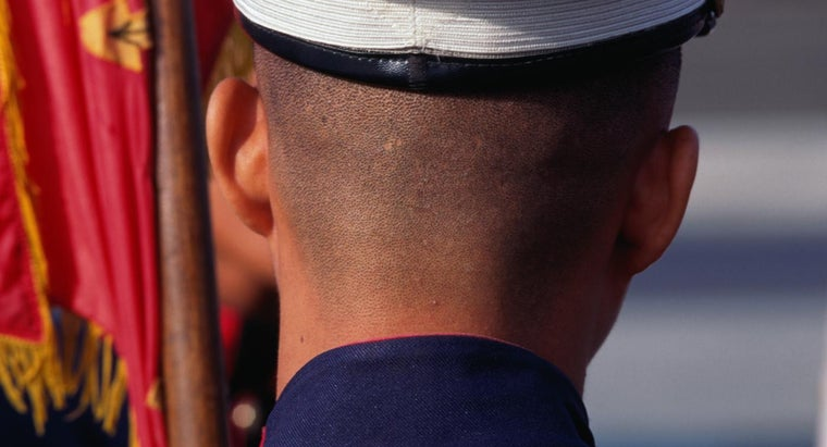 Which Schools Offer Marine ROTC?