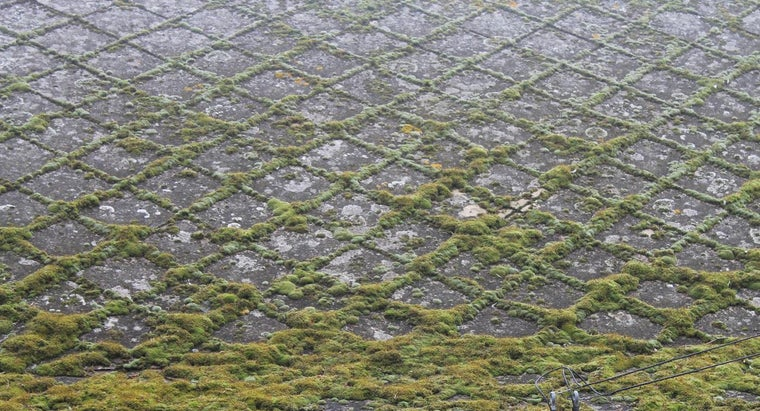 What Is the Best Way to Clean Moss From a Roof?