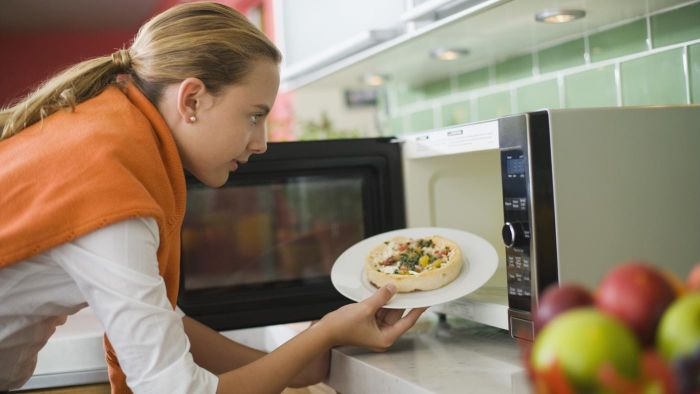What Is a Panasonic Inverter Microwave Oven?