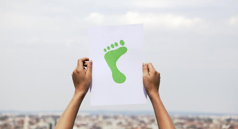How Can You Test Your Ecological Footprint?