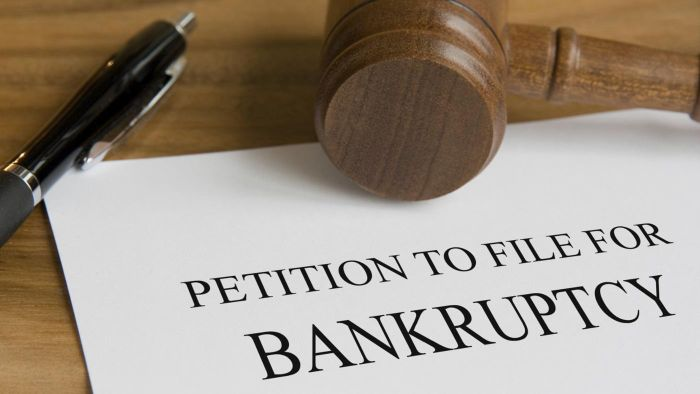 What Are Some Facts About Chapter 11 Bankruptcy?